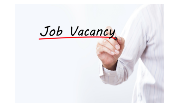 Development Manager Position